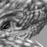 Armadillo Lizard Close up. . .
